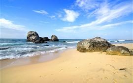 Mar, playa, piedras, tropical.