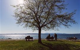 Море, дерево, скамейка, трава, люди, солнце