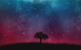 Single tree, grass, starry, sky, night