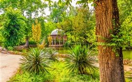 Espanha, sevilha, gazebo, árvores, lagoa, parque