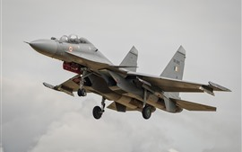 Preview wallpaper Sukhoi Su-30MKI fighter