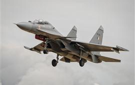 Aperçu fond d'écran Sukhoi Su-30MKI combattant