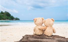 Aperçu fond d'écran Ours en peluche, vue de dos, plage, mer