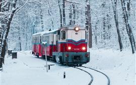 Inverno, neve, trem, ferrovia, árvores