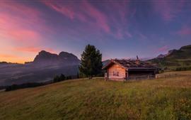 Casa de madeira, árvores, montanhas, grama, crepúsculo