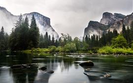 Parque Nacional de Yosemite, Califórnia, EUA, montanhas, árvores, rio