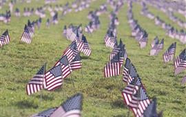 Bandeira da América, terra, grama