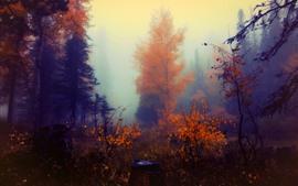 Outono, árvores, nevoeiro, pintura de arte