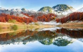 Bósnia, montanha, árvores, lago, reflexão da água