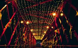 Мост, ночь, огни, праздник