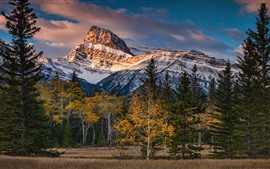 Preview wallpaper Canada, Albert, mountains, trees, clouds, autumn