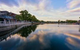 China, parque, lago, barcos, cerca, salgueiro, pessoas