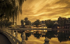 Chinese park, buildings, willow, lake, fence, dusk