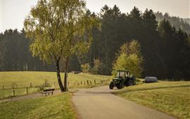 Campo, árboles, camino, tractor.