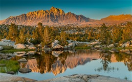 Eastern Sierra, pond, trees, mountains