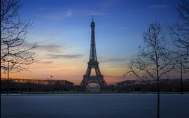 Vorschau des Hintergrundbilder Eiffelturm, Nacht, Bäume, Paris, Frankreich