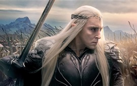 Preview wallpaper Elf, The Hobbit: The Battle of the Five Armies