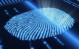 Fingerprint, abstract, light