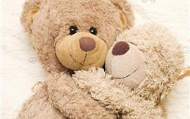 Preview wallpaper Furry teddy bears, hug