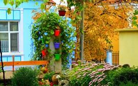 Jardim, flores, plantas de casa, casa