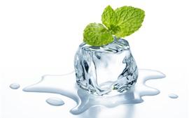 Cubo de gelo, folhas de hortelã, água, fundo branco