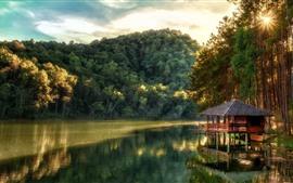 Lago, floresta, árvores, cabana, sol