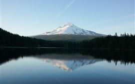 Lago, montaña, cubiertas de nieve, árboles, reflejo de agua.