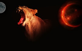 Preview wallpaper Lioness, mouth, teeth, planet, creative picture