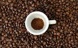 Many coffee beans, white cup