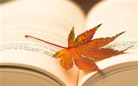 Hoja de arce, libro, brumoso