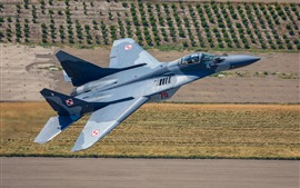 Preview wallpaper MiG-29A multi-role fighter