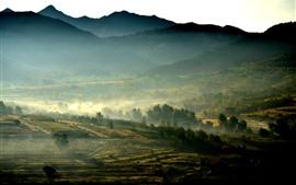 Manhã, nevoeiro, montanhas, campos, campo