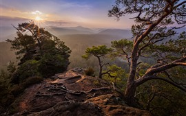Preview wallpaper Mountains, pine trees, sunrise