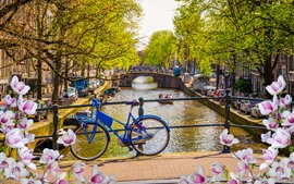 Preview wallpaper Netherlands, Amsterdam, flowers, bridge, bike, city, river, spring