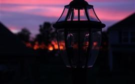 Ночь, лампа, тьма