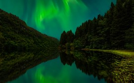 Northern lights, trees, lake, water reflection, night