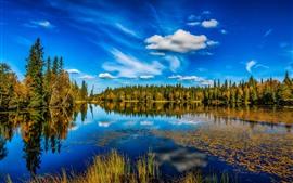 Noruega, lago, árboles, reflejo de agua, cielo azul, paisaje de naturaleza