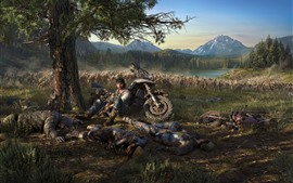 Preview wallpaper PS4 game, Days Gone