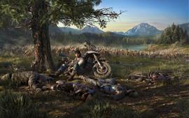 Игра PS4, Days Gone