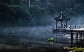 Park, lake, gazebo, fog