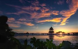 Parque, lago, torre, manhã, nuvens, nascer do sol