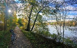 Parque, árvores, caminho, bicicleta, lago, sol