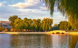 Preview wallpaper Park, willow, trees, river, bridge, China