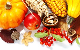 Pumpkin, corn, wheat, berries, nuts