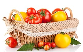 Red and yellow tomatoes, basket, white background