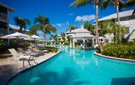 Preview wallpaper Resort, palm trees, pool, chairs, blue sky, tropical