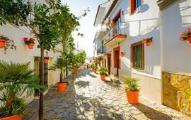 Preview wallpaper Spain, Estepona, street, houses, trees, sunshine