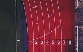 Estádio, pista, esporte, vista superior