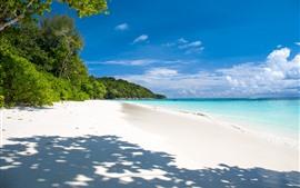 壁紙のプレビュー 夏、トロピカル、ビーチ、海、ヤシの木々、影