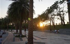 Pôr do sol, árvores, parque, pessoas